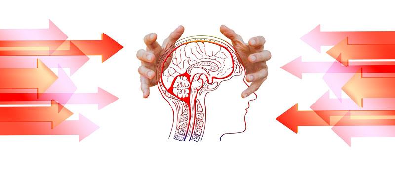Hormone werden durch Stress beeinflusst