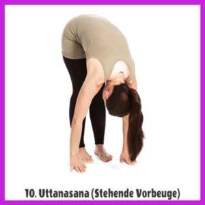 Yoga Sonnengruß - Uttanasana / stehende Vorbeuge 2
