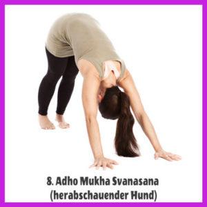 Yoga Sonnengruß - Adho Mukha Svanasana / herabschauender Hund