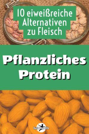 Pflanzliches Protein - 10 fleischlose Alternativen
